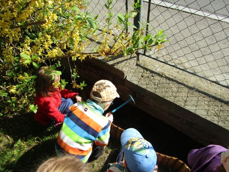 Záhonky pro staré odrůdy podél plotu šetří místo