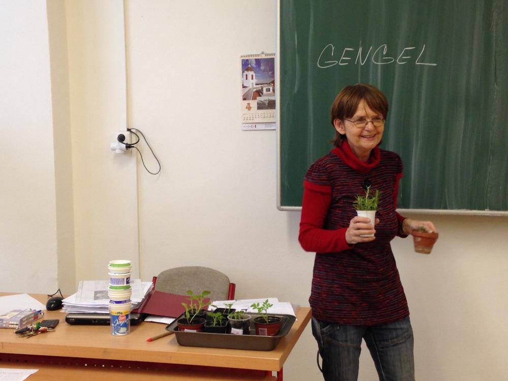 Představení Gengelu v ZŠ Horácké náměstí Brno