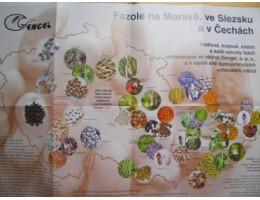 Obrazová mapa fazolí