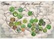 Mapa hrachu